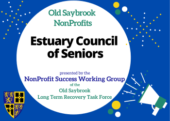 Estuary Council of seniors